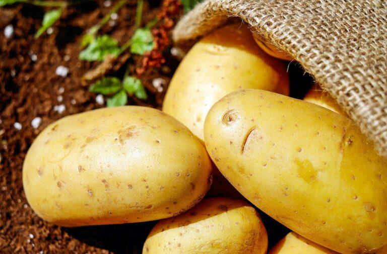 potatoes, vegetable, food