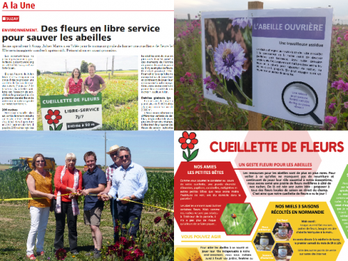 exemples de supports de communication pour la cueillette de fleurs
